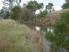 Calder Freeway project, Coliban River, Taradale